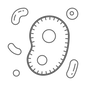 icons8-microorganisms-500.png