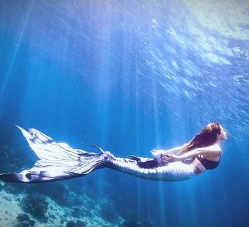 découverte-nage-de-sirène-bretagne
