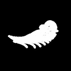 cours-de-sirène-quiberon