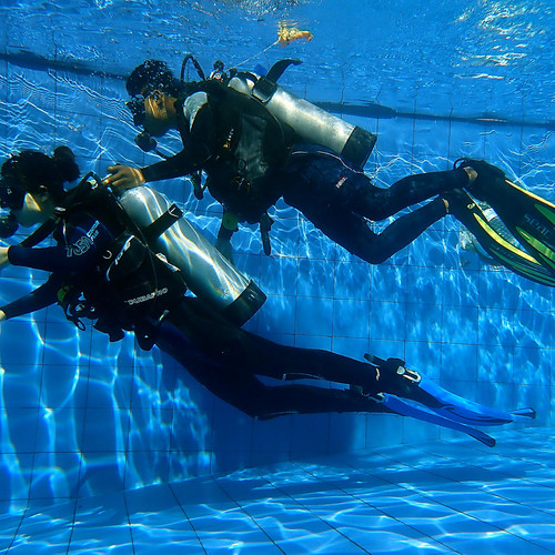 Discover Scuba Diving Pool Session