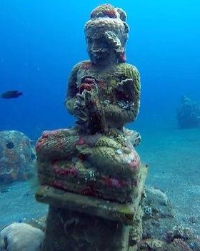 coralgarden.jpg