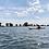 Thumbnail: The Maas en Waal Paddle (NL)