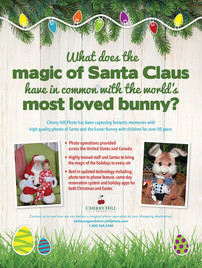 Mall Santa and Easter Bunny Ad