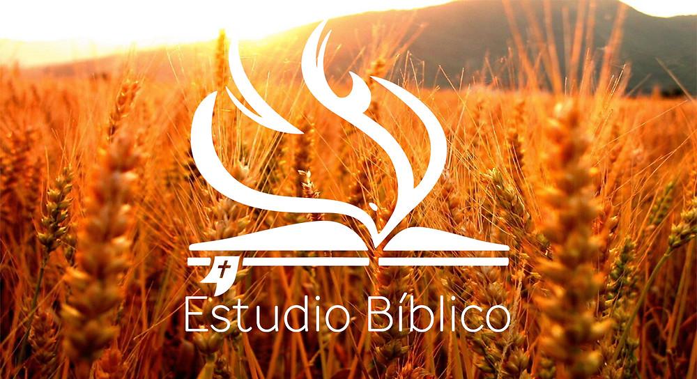 Estudio Biblico.jpg