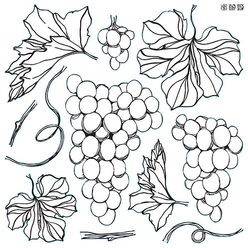 Grapes Decor Stamp