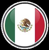Asesoria_Mexico (LINE Logistica).png