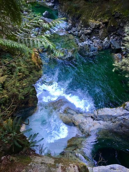 Melody Salehzadeh - Lynn Canyon Serenity