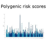 Polygenic Risk Scores_edited.jpg