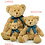Medium Bracken Teddy Bear With Hoodie