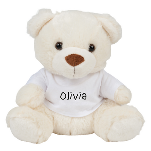 Personalised Small Teddy in a T-shirt