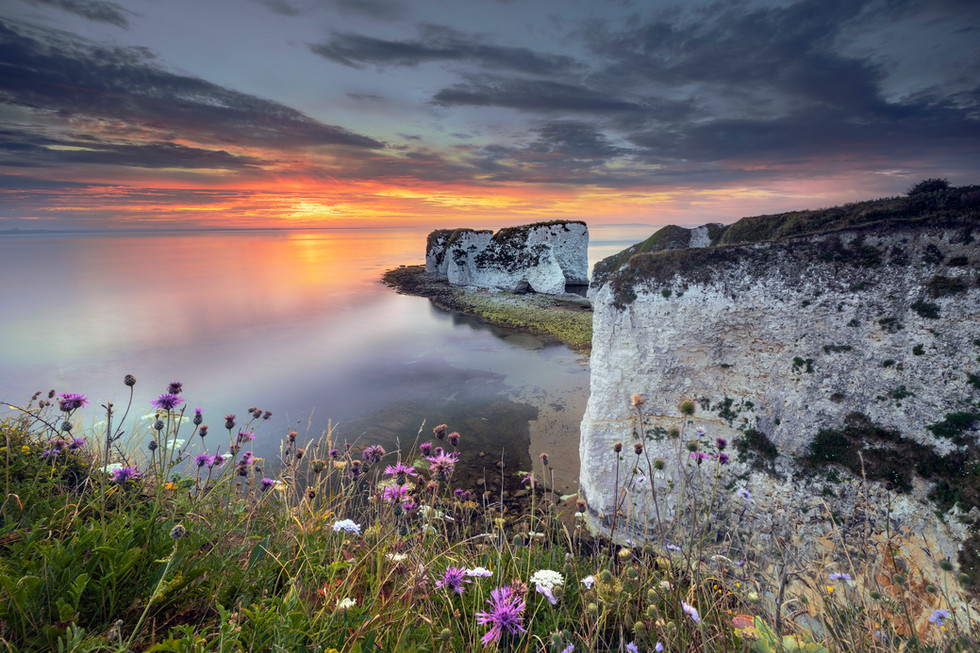 Sunrise over Old Harry Rocks