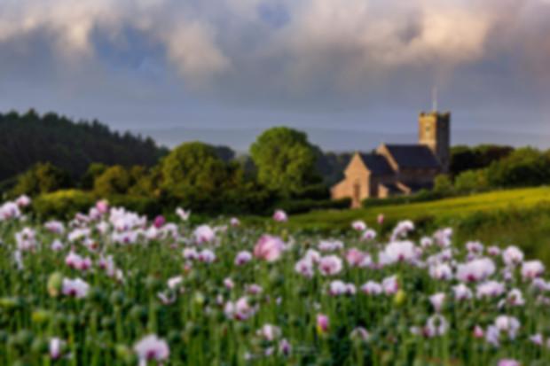 Dorset-Churches-Landmarks.jpg