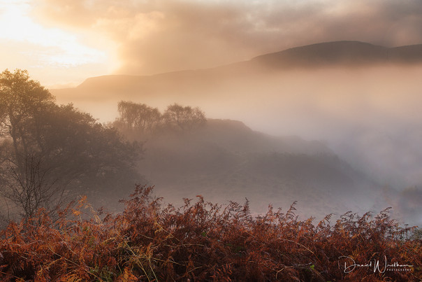 Autumn in the Brecons