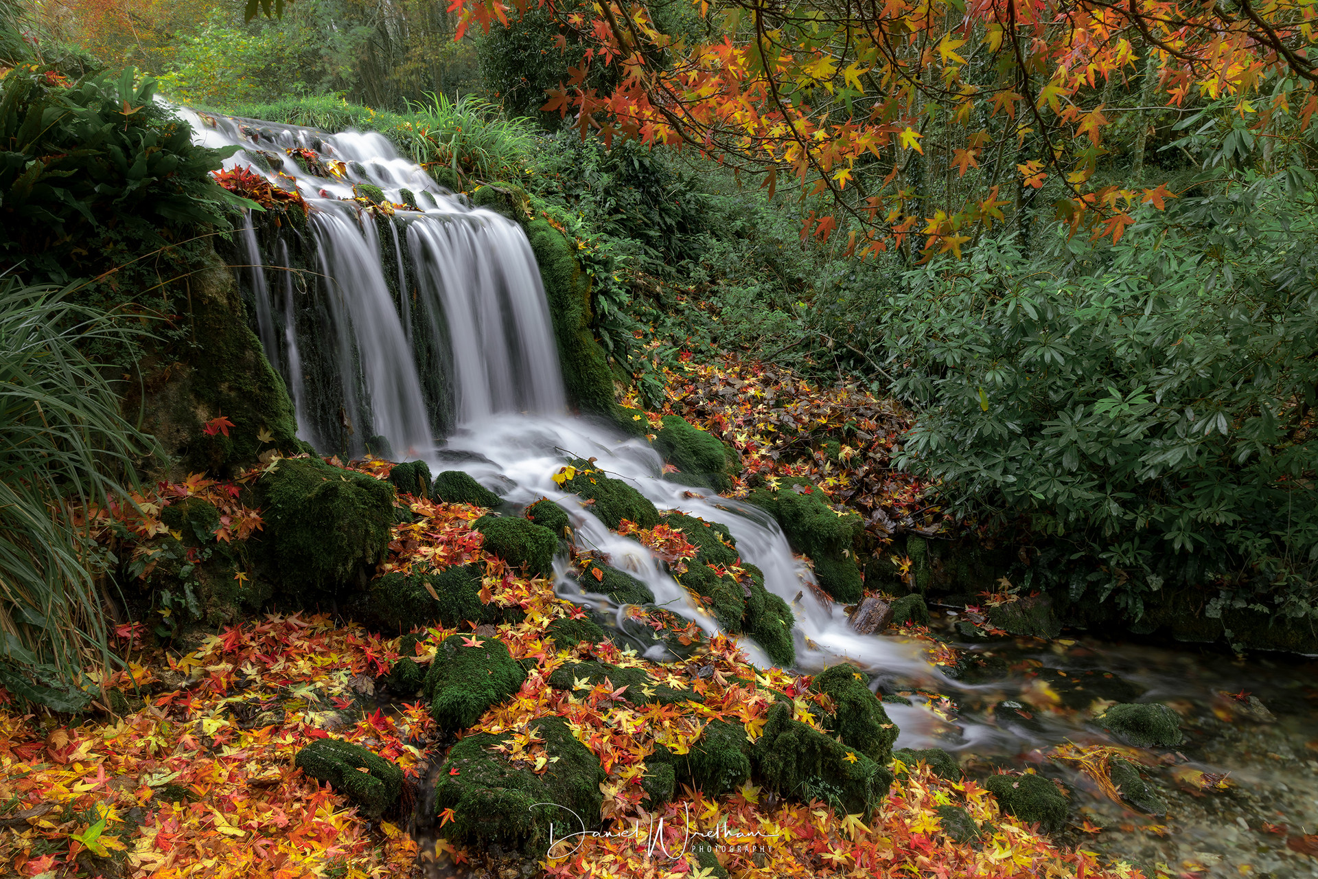 Littlebredy Waterfall