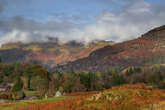 Langdale Mornings