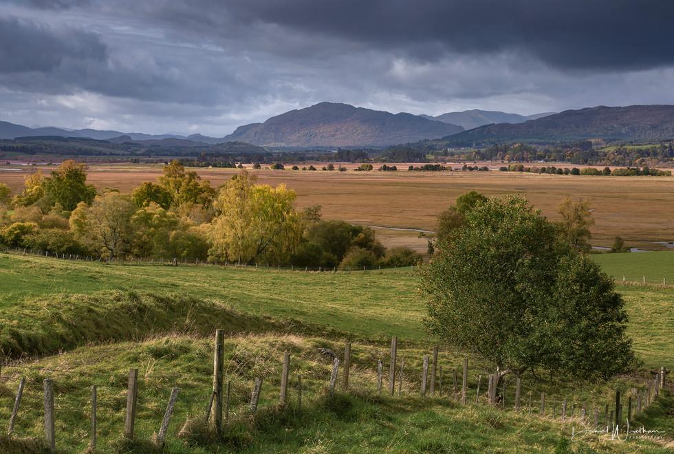 Cairngorms Vista