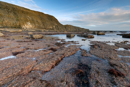 Low Tide at Hen Cliff