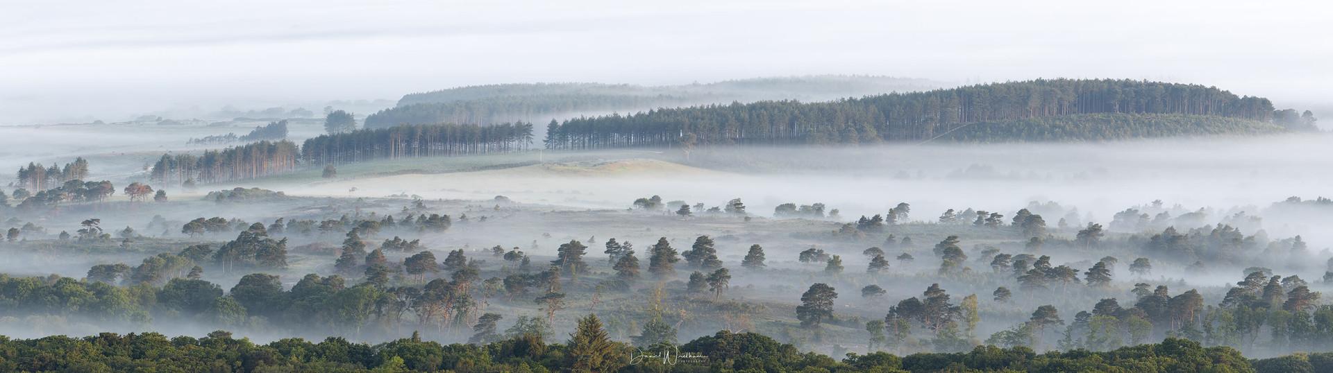 Dorset Mist Panorama