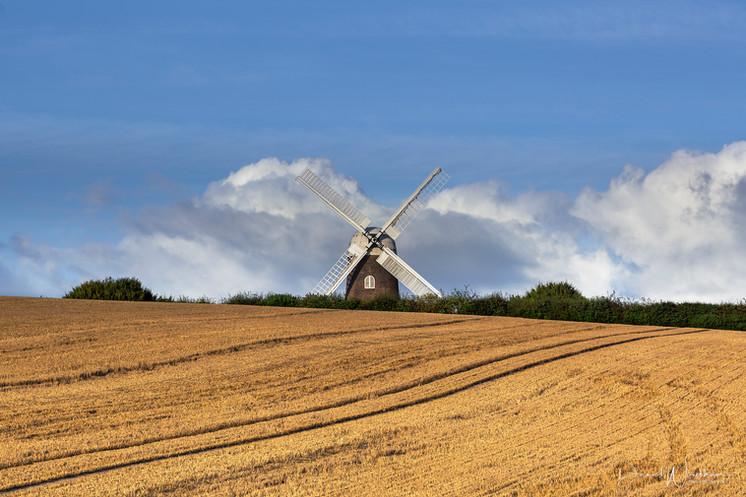 Evening light on Wilton Windmill