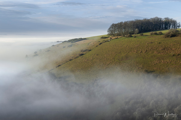 Mist Island