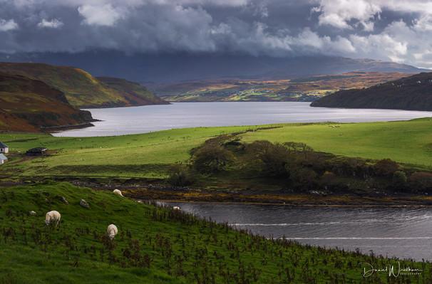 Looking Over Loch Harport