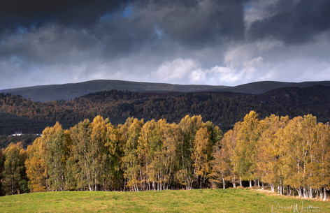 Autumn at the Cairngorms