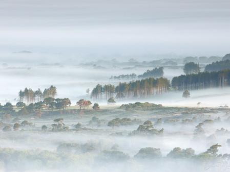 Who Needs Landscape Photography ?