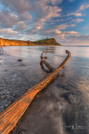 Drift Wood To Be._