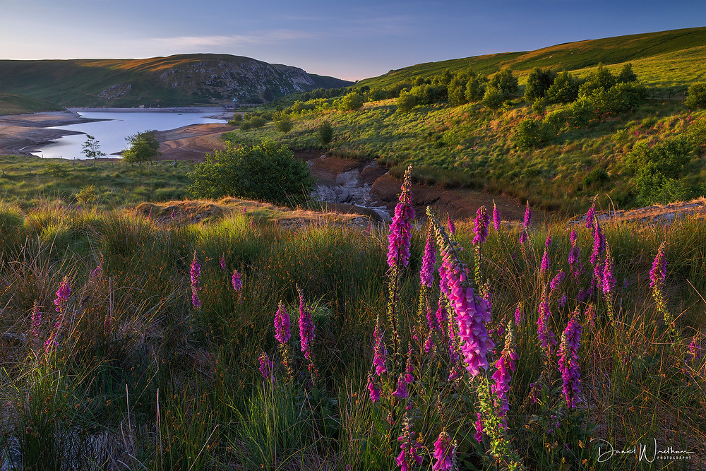 The Elan Valley Landscape Photography