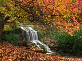 Landscape Photography Blog, November 2020