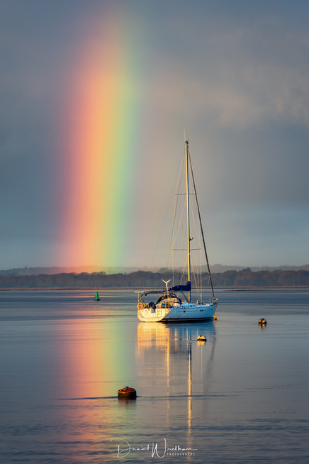 Rockley Rainbow