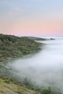 Mist Lines Sunrise