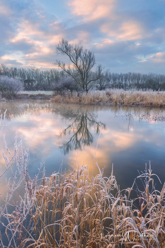 The Stour at -5