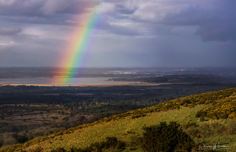 Rainbow Over Poole Harbour