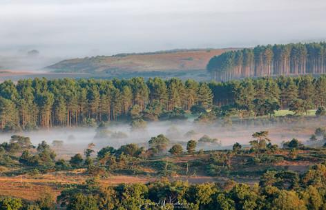 Mist over Lulworth Ranges