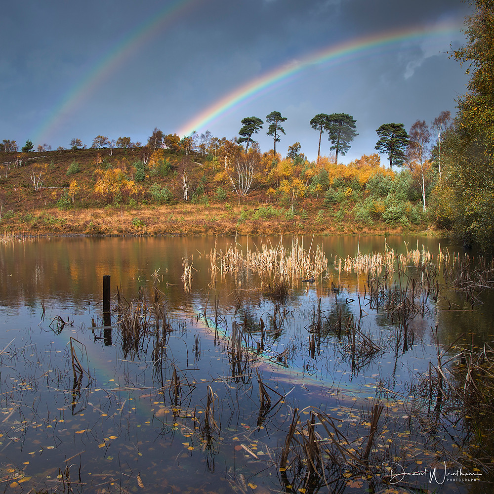 How to photograph rainbows