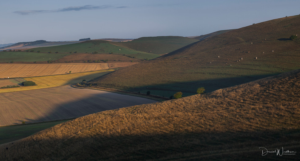 Morning Light at Wessex Downs