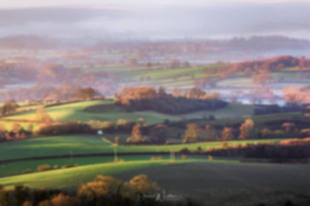 Light-Over-Dorset.jpg