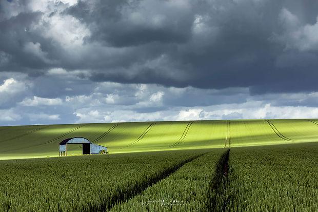 Dorset-Inland-Pictures.jpg