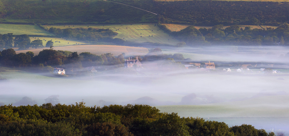 Dorset Misty Mornings