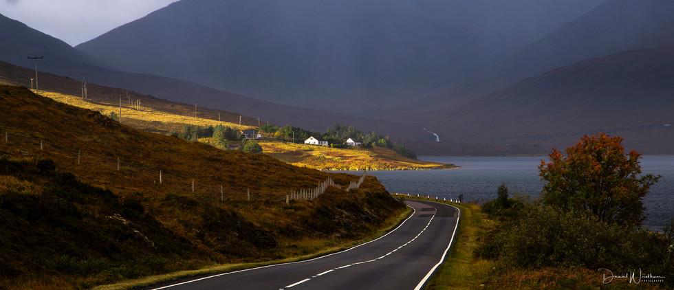 Skye Light