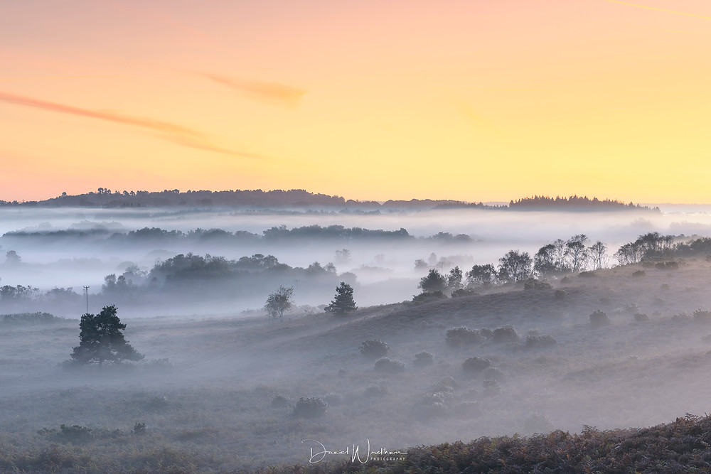 Dorset misty sunrise