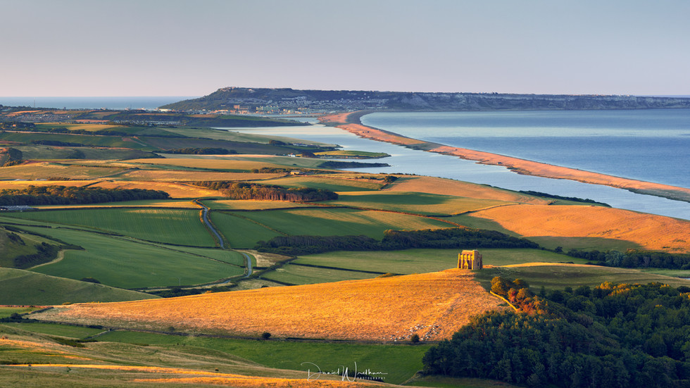 First Light at Abbotsbury
