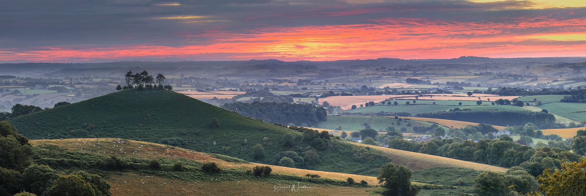 Colmers Hill Sunrise
