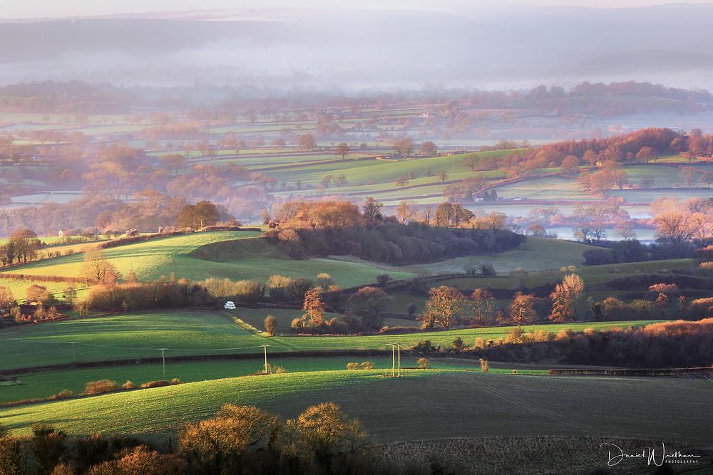 Mist, Light, Dorset