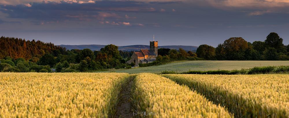 dorset-landscape