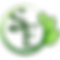 serene earth LLC logo.png