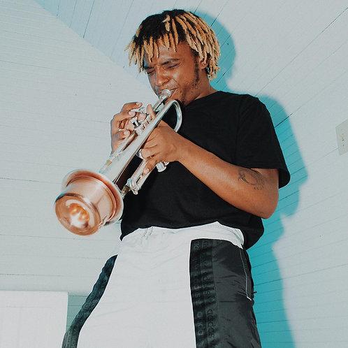 Harmon Muted Trumpet Loop in Cminor
