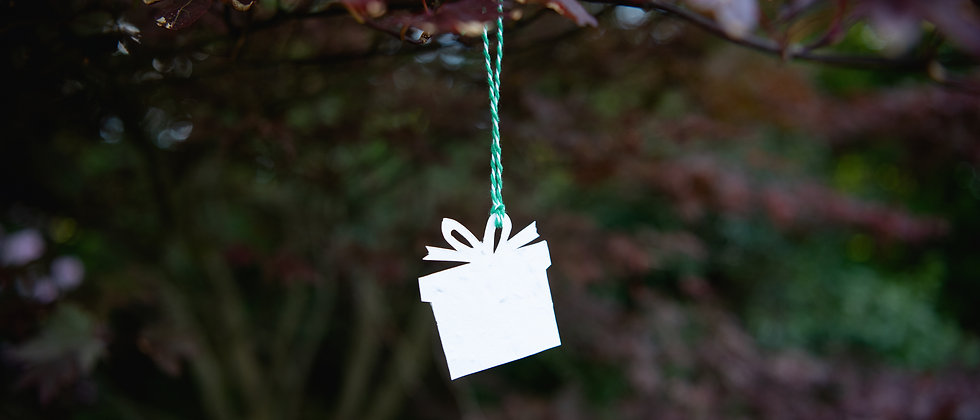 Plantable present shaped strung gift tag pack 10
