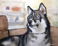Watercolor Rogue the husky